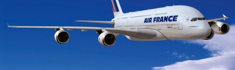 A Portfolio Diversity View of Coopetition: The Air France Case